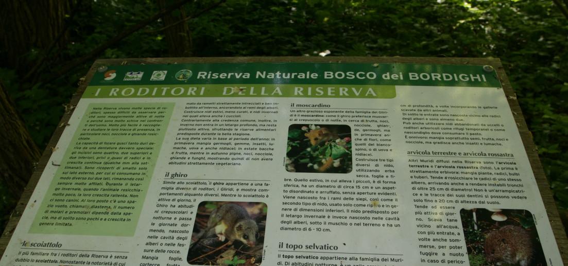 Riserva naturale bosco dei Bordighi