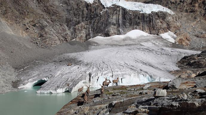 Luigi Marson Glacier Trail