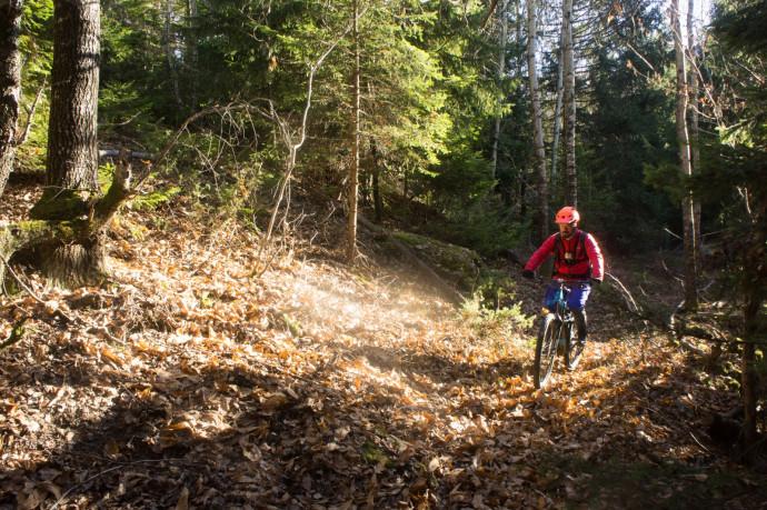 Sugarel trail