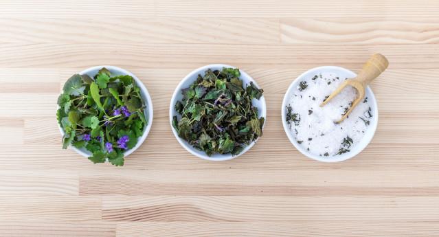 Biodiversità gastronomica