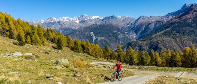 MTB-Torre S. Maria, Alpe Arcoglio inferiore e Alpe Piasci