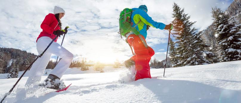 La selvaggia Alpe Musella