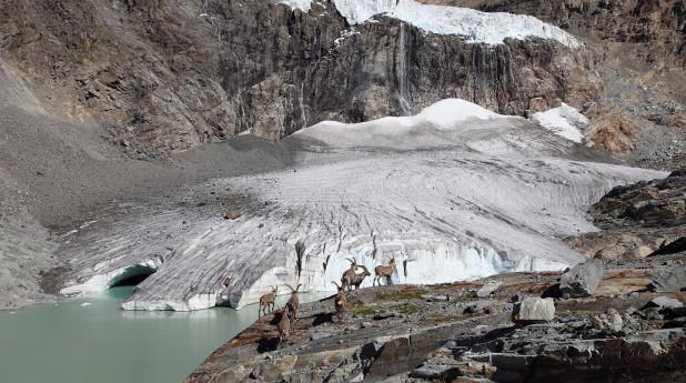Sentiero tematico-glaciologico Luigi Marson