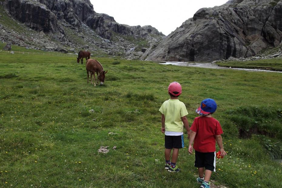 Da Campo Moro al Rifugio Zoia oppure al Rifugio Bignami oppure in Val Poschiavina