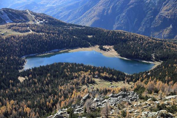 Lago Palù - riproduzione riservata